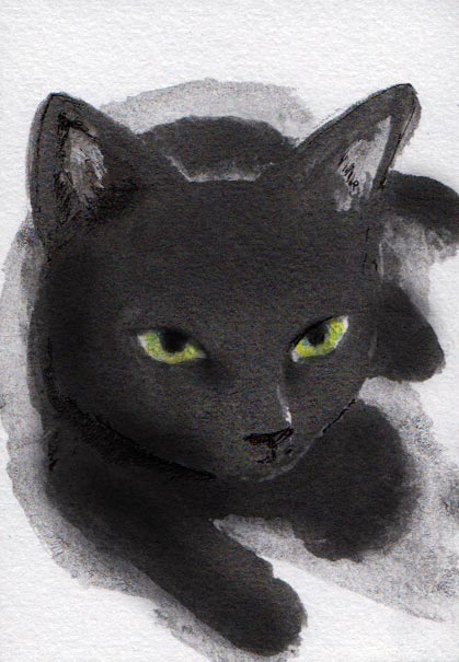 Art Graf sketch cat
