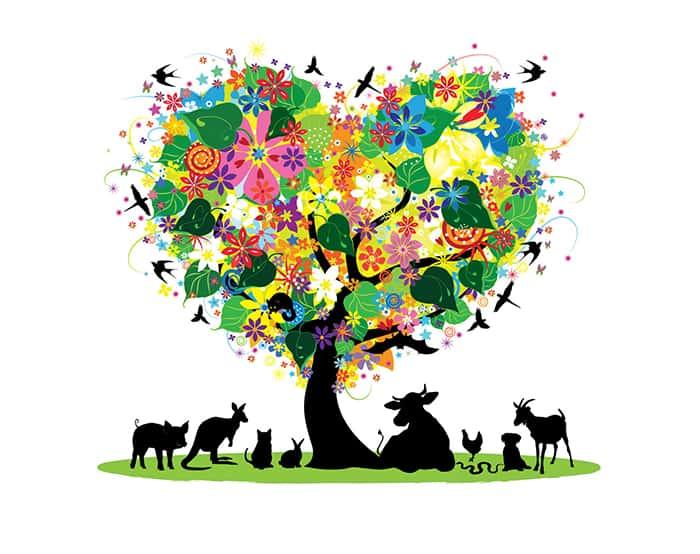 Detailed and colourful logo illustration - Abolina Art